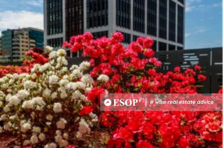 Business Garden Bucharest 13636.1 11