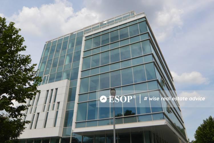Victoria Stylish Office Building 12534 19